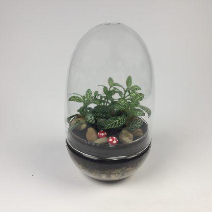 'Eggdom' living terrarium(9 x 17 cm / Eggdom-002)