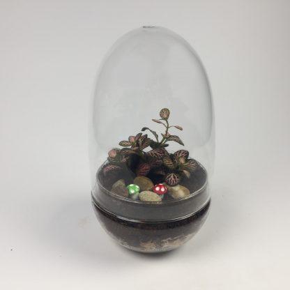 'Eggdom' living terrarium(9 x 17 cm / Eggdom-005)