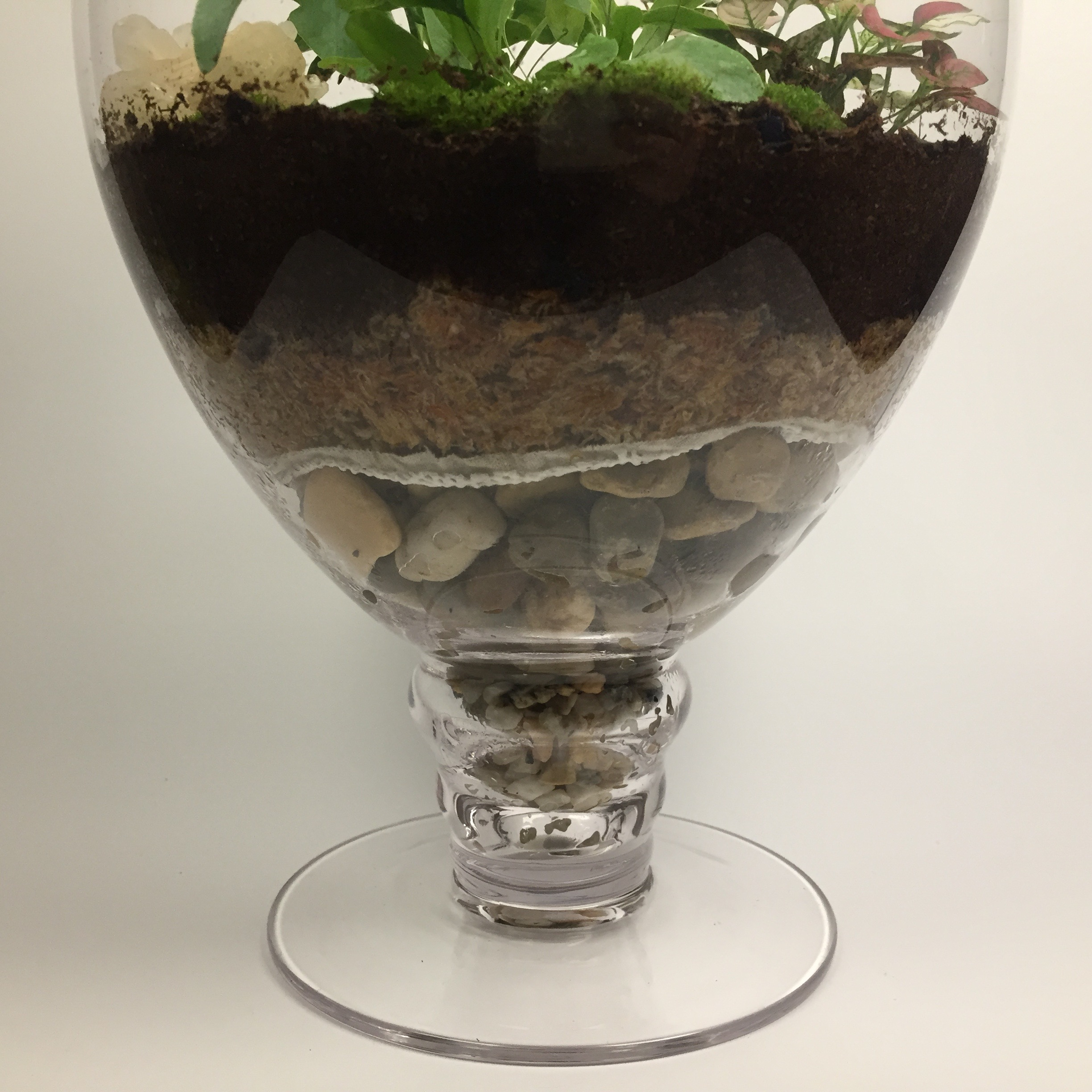 """Matilda"" Large closed living terrarium with glass lid and natural gemstone."